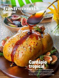 Catálogo Angeloni ( Vencido )