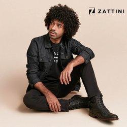 Ofertas de Zattini no catálogo Zattini (  9 dias mais)