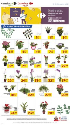 Catálogo Carrefour Bairro (  12 dias mais)
