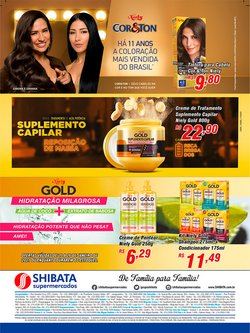 Ofertas de Massa de gesso em Shibata Supermercados