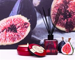 Ofertas Perfumarias e Beleza no catálogo Phebo em Campinas ( 6 dias mais )