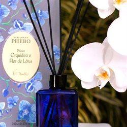 Ofertas Perfumarias e Beleza no catálogo Phebo em Ribeirão Preto ( Publicado a 3 dias )