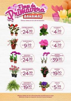 Catálogo Bahamas Supermercados (  Publicado ontem)