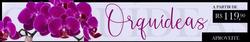 Cupom Giuliana Flores ( Publicado a 2 dias )