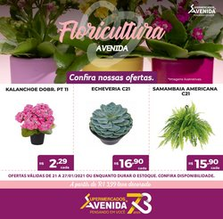 Catálogo Supermercados Avenida ( 2 dias mais )