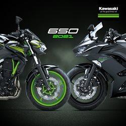 Ofertas Carros, Motos e Peças no catálogo Kawasaki em Niterói ( 17 dias mais )