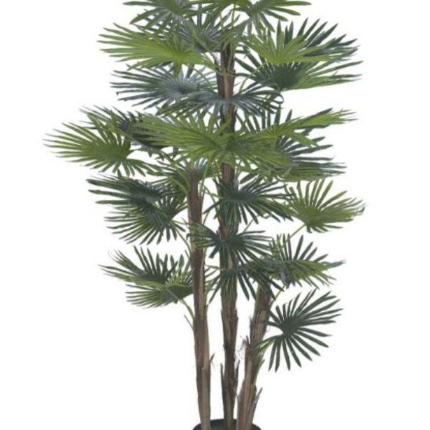 Oferta de Planta Artificial A.palmeira Leque Real Toque C/pote X30 (verde) 1,2m por R$529,9