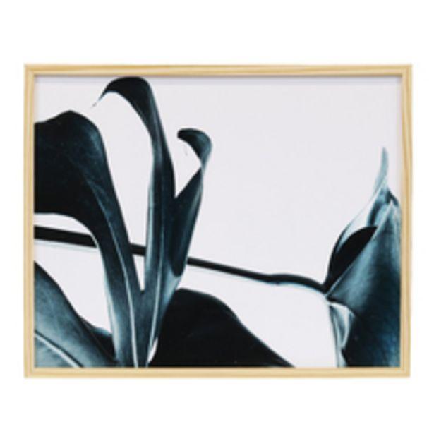 Oferta de Quadro Ikigai II Verde 50x40cm Inspire por R$79,9