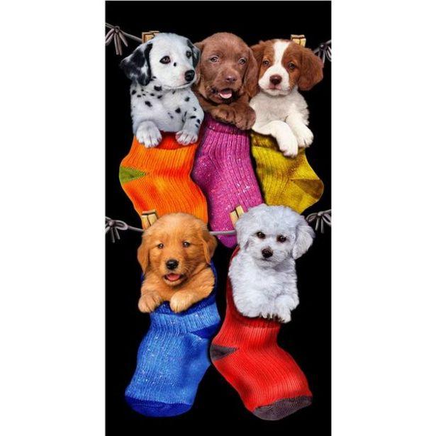 Oferta de Toalha De Praia Buettner Veludo Estampado Puppies In The Stockings Preto por R$59,89