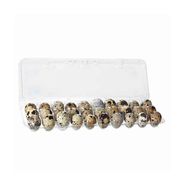 Oferta de Ovos de Codorna Carrefour com 30 Unidades por R$5,99