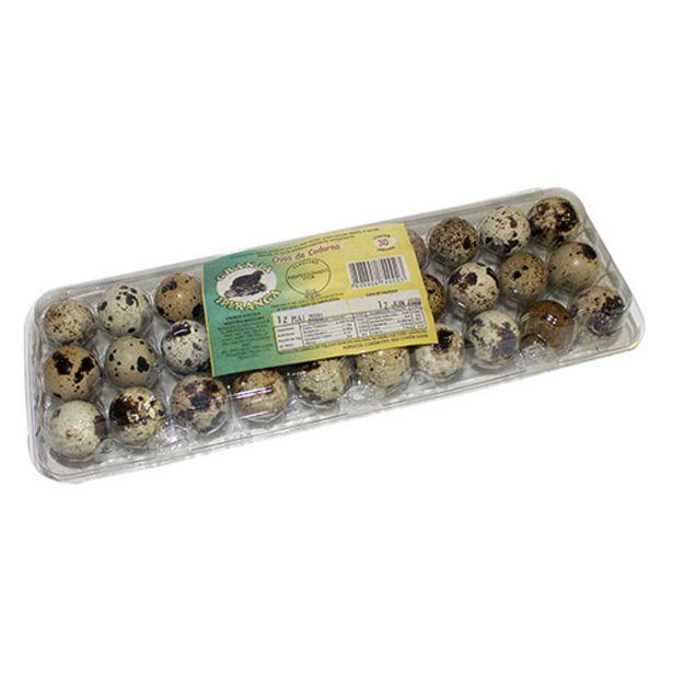 Oferta de Ovos De Codorna Ipiranga 30 Ovos por R$5,99