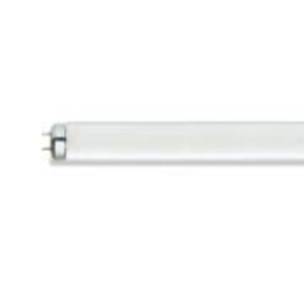 Oferta de Lâmpada Fluorescente 16W T8 F16 Confort TLD - Philips por R$8,9