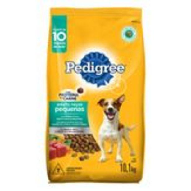 Oferta de Alimento para Cães Adultos Raças Pequenas Carne Pedigree Pacote 10kg por R$99,99