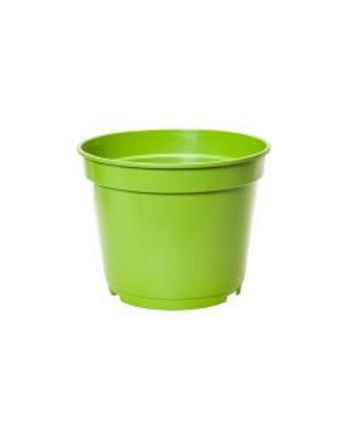 Oferta de Vaso Petgarden Primavera Colorido N.6 por R$11,9