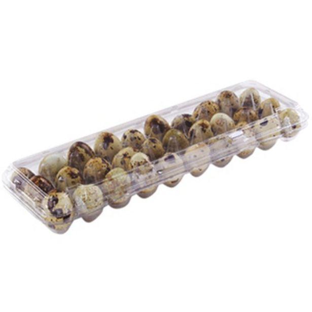 Oferta de Ovo De Codorna Via Agro Comades por R$5,99