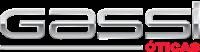 Logo Óticas Gassi