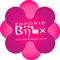Logo Empório Bijux